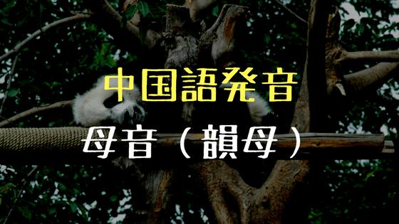 中国語発音1: 母音(韻母)   チ...